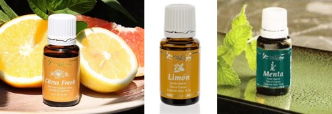collage-citrus-menta-limon