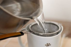 preparing-green-tea
