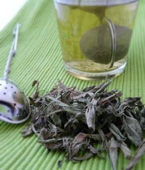 stevia-hierba-dulce