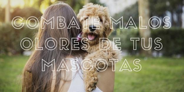 combate-malos-olores-de-tus-mascotas
