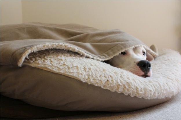 cave-dog-bed-sewing-pattern
