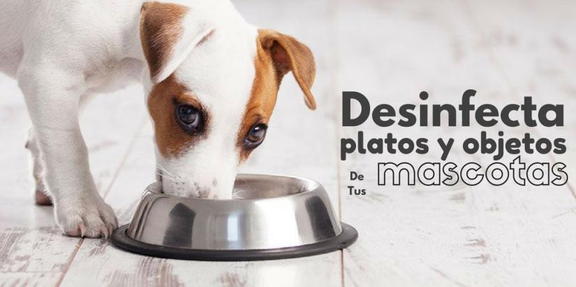 desinfecta-platosy-objetos-2