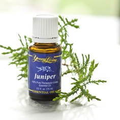 young_living_juniper_essential_oil_-_15_ml