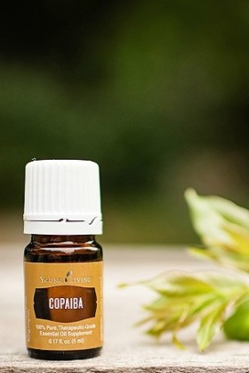 young-living-copaiba