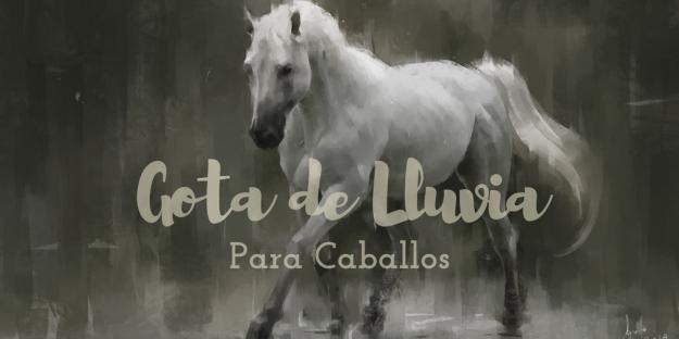 gota-de-lluvia-para-caballos