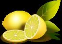 Image result for separadores web limones