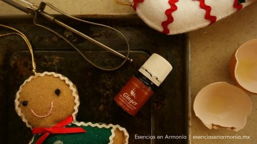 Image result for aromaterapia en las fiestas de navidad
