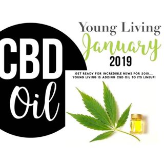 Image result for que es cbd young living